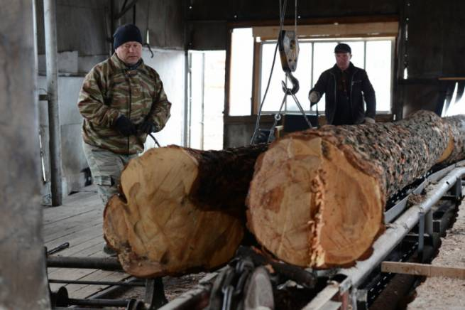 Lithuania's wood industry group VMG set to invest EUR 180 mln in Akmene